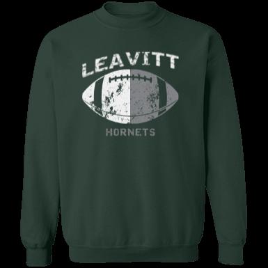 Leavitt Area High School